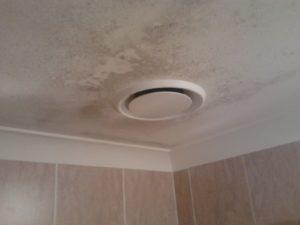 Как убрать плесень в ванной на потолке?