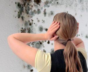 Как избавиться от грибка в доме на потолке и стенах?