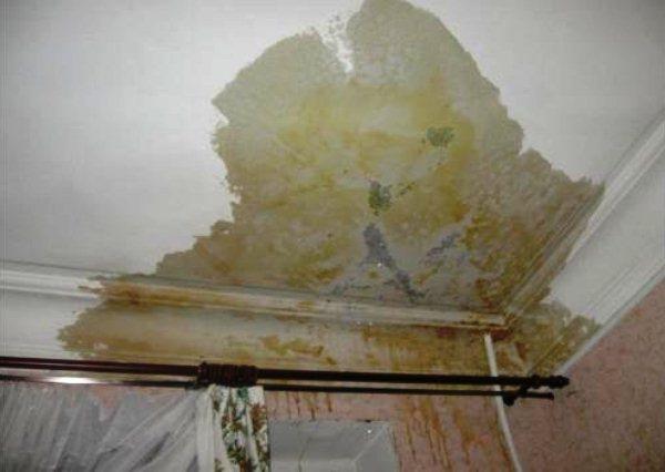 желтые пятна на потолке фото 3