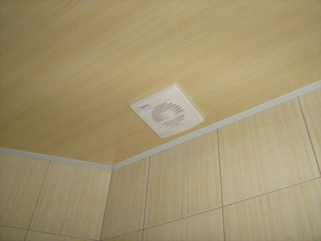 как и чем мыть пластиковый потолок фото 2